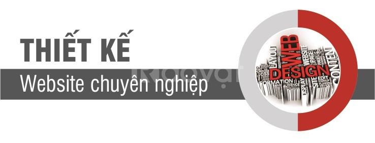 Thiết kế website chuyên nghiệp giá rẻ tại Tân Bình (ảnh 1)