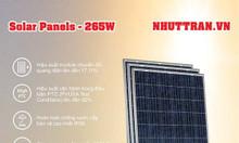 Tấm pin năng lượng mặt trời Poly 265W chính hãng