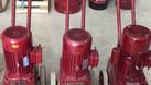 Máy mài sàn bê tông DSM 250-350 (ảnh 4)