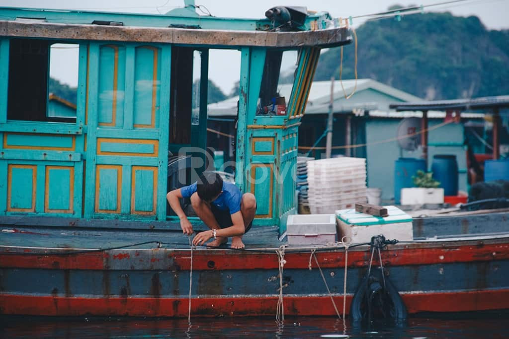 Hạ Long - Móng Cái Biển Trà Cổ - Đông Hưng Trung Quốc 2N1D chỉ 1990k