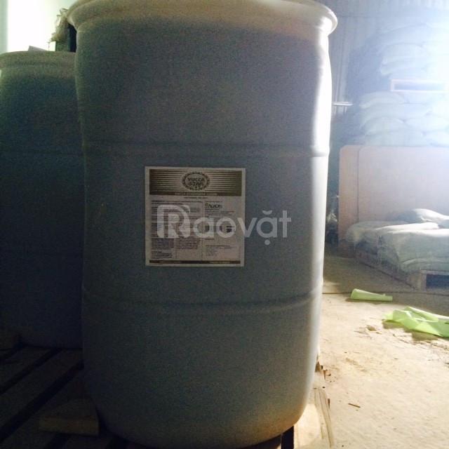 Cung cấp yucca nguyên liệu dùng trong sản xuất thuốc thú y thủy sản