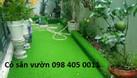 Địa chỉ bán cỏ nhân tạo giá rẻ Hà Nội  (ảnh 1)