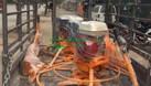 Máy xoa nền bê tông đơn (ảnh 6)