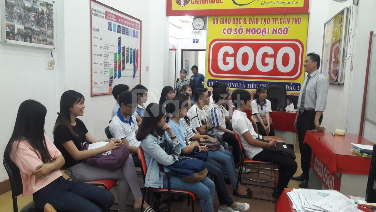 Anh ngữ quốc tế gogo's tổng khai giảng khóa mới hàng tuần