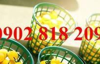 Rổ đựng banh golf bằng nhựa chứa 100 banh