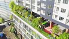 Golden Palm mở bán 50 căn hộ đợt cuối, giá từ 32 tr/m2, CK tới 500tr (ảnh 4)