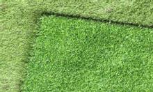 Cỏ nhân tạo 2cm, cỏ giả, cỏ nội ngoại thất