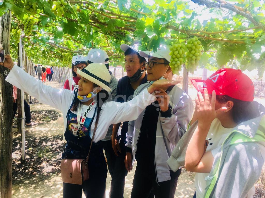 Khám phá du lịch Bình Ba tết dương lịch 2019 - Top Travels
