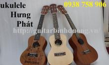 Đàn mini ukulele nhỏ gọn giá rẻ toàn quốc tại Bình Dương