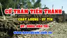 Tiến Thành chuyên bán cừ tràm tại TPHCM giá rẻ uy tín (ảnh 4)