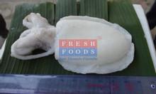 Phân phối mực nang làm sạch số lượng lớn có sẵn tại kho