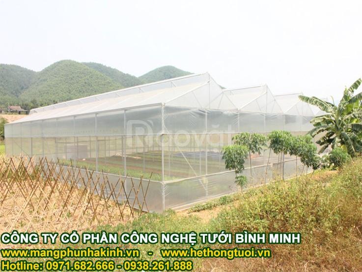Mô hình nhà lưới trồng rau, mô hình nhà lưới giá rẻ, mô hình nhà lưới