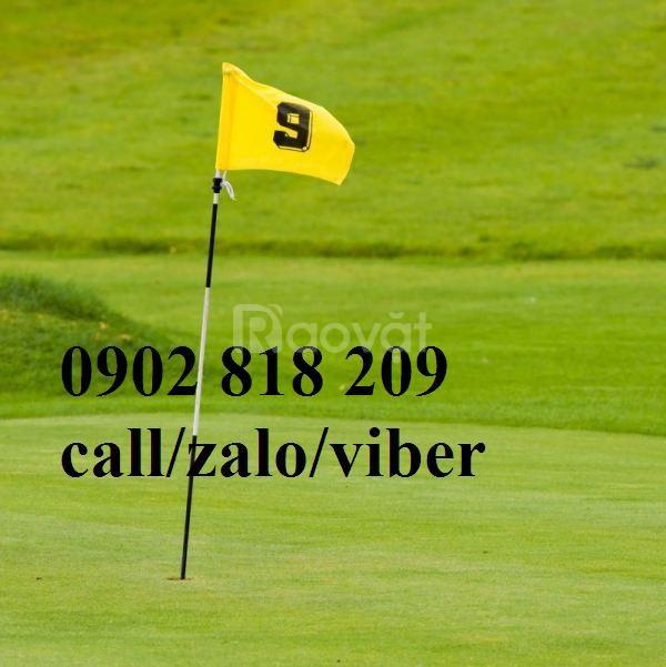 Cờ sân golf, lá cờ golf vải có cán nhựa