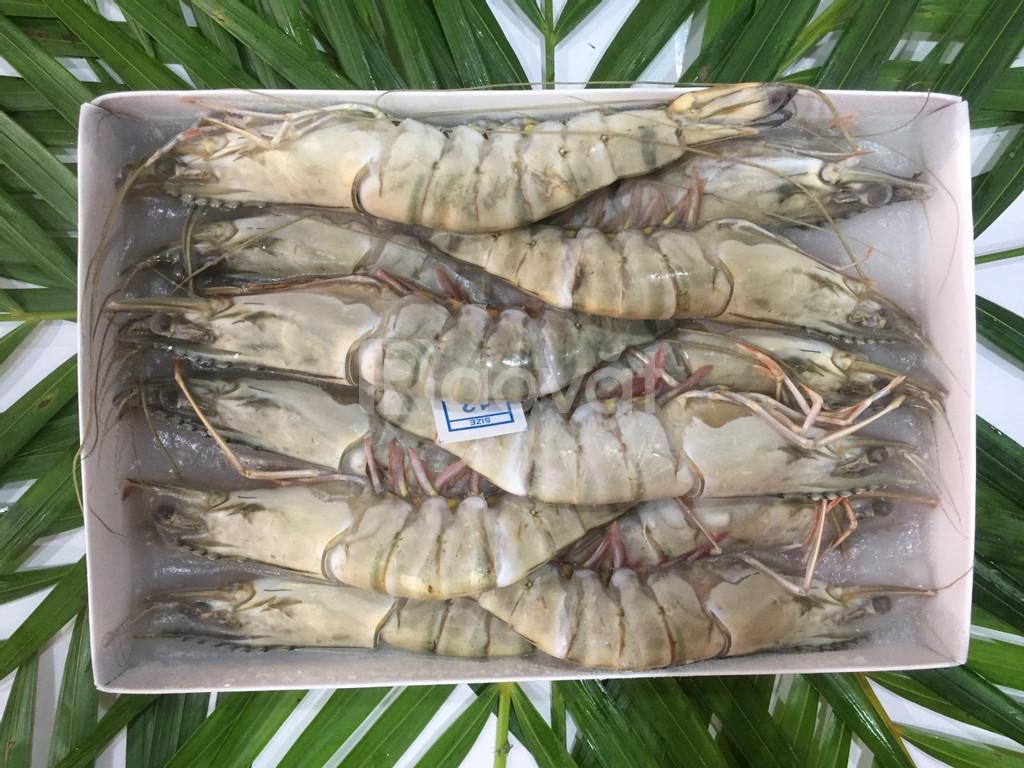 Tôm sú Quảng Canh đông lạnh tiện lợi cho nhà hàng cam kết chất lượng