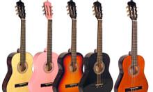 Shop guitar Bình Dương giá rẻ
