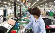 Tuyển gấp lao động sang Nhật Bản làm việc