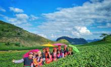 Tour ghép Mộc Châu 2N1Đ khởi hành thứ 7 hàng tuần