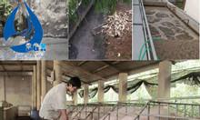 Xử lý nước thải chăn nuôi, hệ thống xử lý nước thải