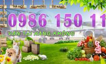 Nhận vận chuyển hàng hóa bằng máy bay đi Hà Nội, Hải Phòng, Vinh, Huế