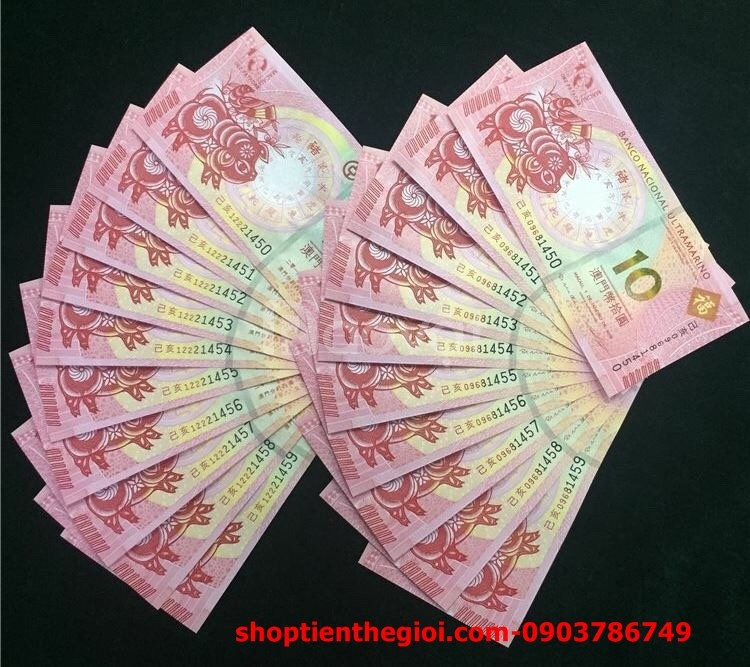 Tiền con heo may mắn macao patacas