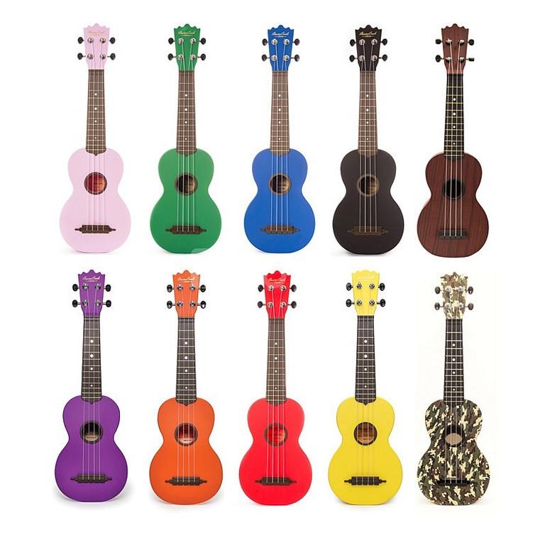 Đàn ukulele giá rẻ tại Bình Dương (ảnh 4)