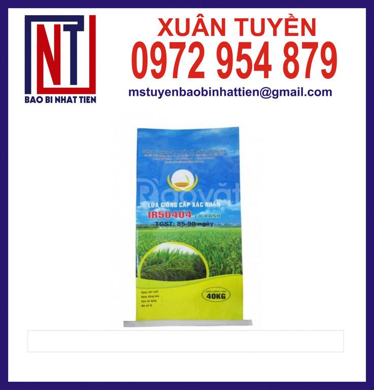 Bao pp dệt đựng lúa giống 25kg