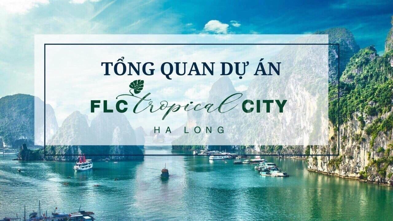 Chỉ 1.2 tỷ sở hữu ngay đất nền đô thị tại Hạ Long (ảnh 6)