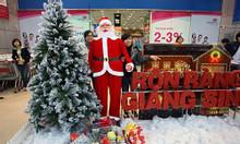 Nhận trang trí Noel, trang trí Tết chuyên nghiệp
