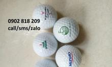 Banh golf in logo làm quà tặng