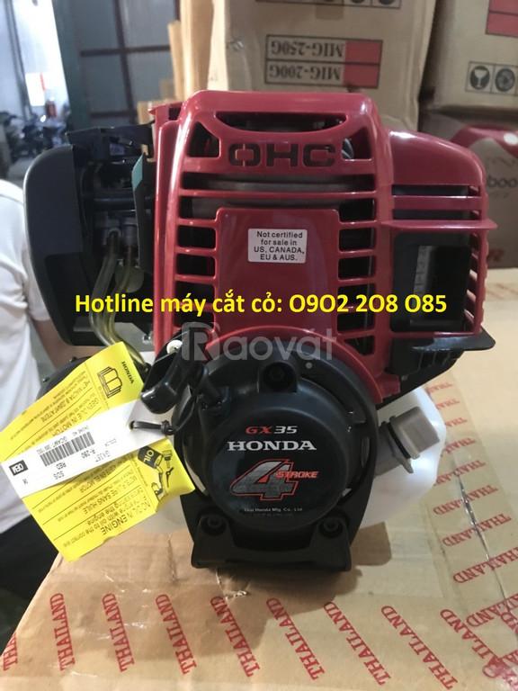 Giá máy cắt cỏ, xạc cỏ, tỉa cành, cưa cây, bơm nước