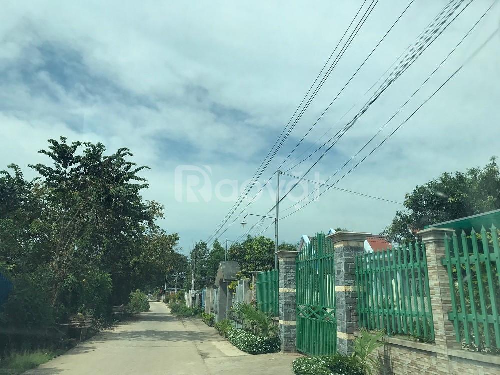 Đất gần cảng logistic sân bay Long Thành đã hạ tầng chỉ từ 2.2 triệu/m (ảnh 1)
