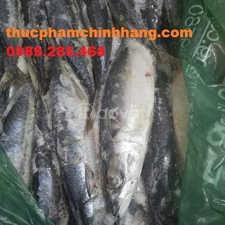 Bán buôn, bán lẻ hải sản đông lạnh tại Hà Nội
