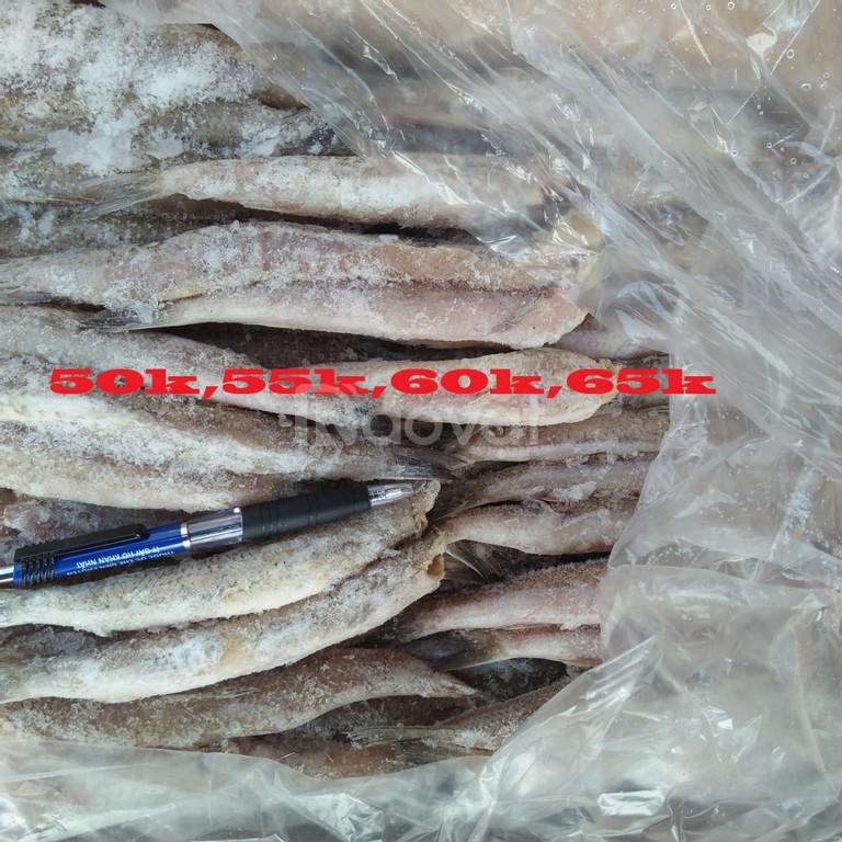 Cá bống biển giá rẻ tại Hà Nội
