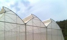 Nhà lưới, nhà lưới nông nghiệp, nhà lưới nhà kinh, nhà lưới trồng rau
