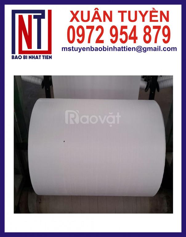 Đơn vị sản xuất cuộn PP dệt dạng manh và dạng ống (ảnh 4)