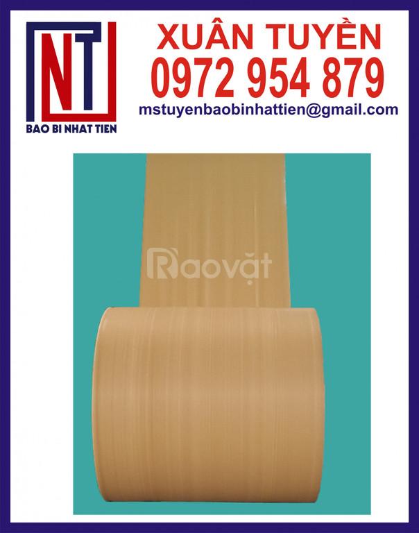 Đơn vị sản xuất cuộn PP dệt dạng manh và dạng ống (ảnh 1)