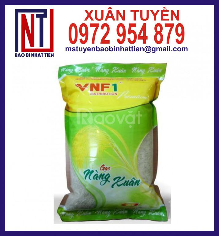 Túi gạo, bao bì gạo 1kg