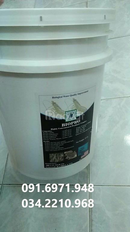 Nơi mua bán men vi sinh dòng bacillus xử lý nước và đáy ao giá tốt