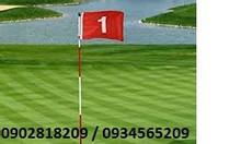 Bộ cờ và lỗ golf nhập khẩu