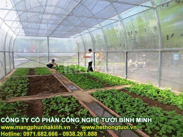Nhà lưới nhà màng, mua lưới trồng rau ở đâu, bản vẽ nhà lưới trồng rau