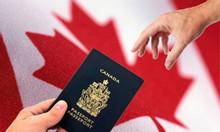Xin visa Canada giá rẻ