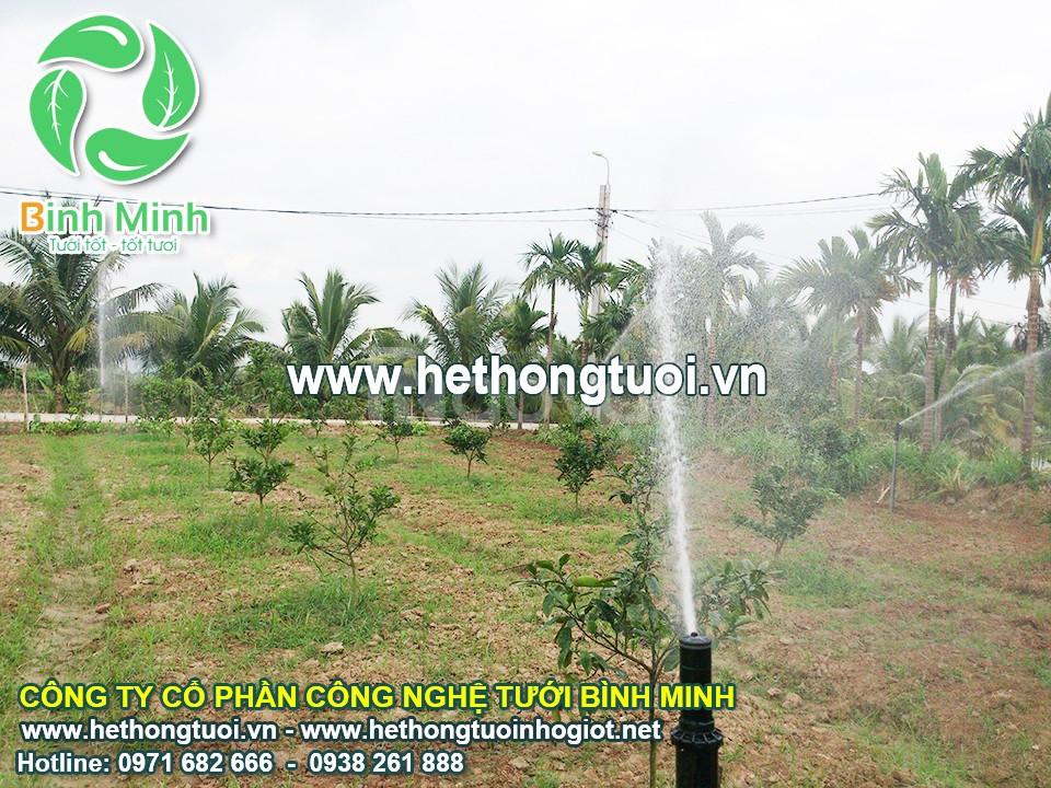 Tưới cảnh quan hệ thống tưới cảnh quan, hệ thống tưới cây vòi tưới cây