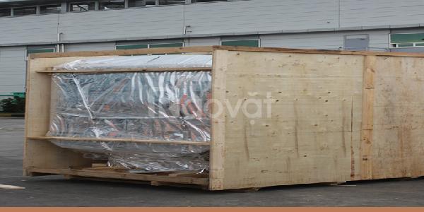 Dịch vụ đóng gói hàng hóa xuất khẩu chuyên nghiệp (ảnh 1)