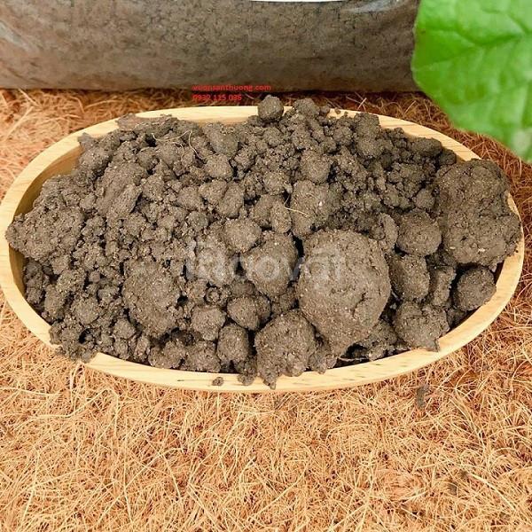 Đất thịt hữu cơ nguyên bản