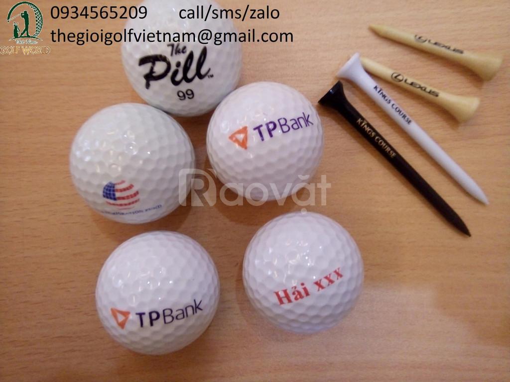 Dịch vụ in logo bóng golf và tee golf