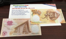 Tiền heo papua lì xì tết 2019