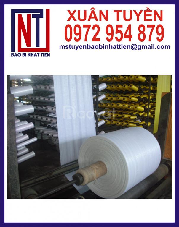 Sản xuất vải dệt PP dạng cuộn
