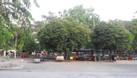 Cho thuê biệt thự 2 mặt tiền Quận 2 nằm ngay công viên (ảnh 5)