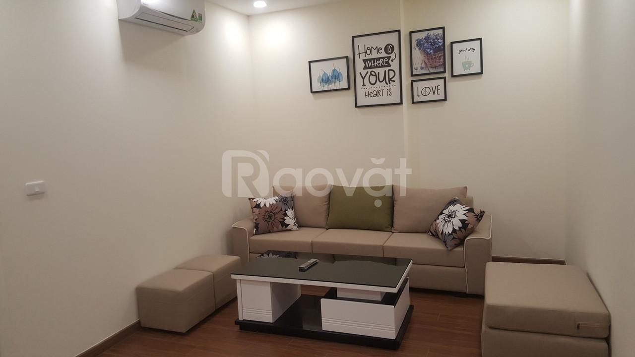 Cho thuê căn hộ 2PN, full nội thất, chung cư Ecogreen City (ảnh 1)