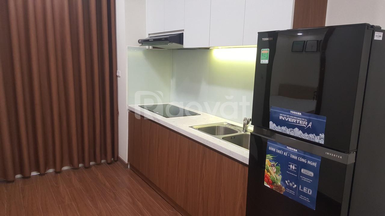 Cho thuê căn hộ 2PN, full nội thất, chung cư Ecogreen City (ảnh 7)